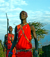 Proud Young Masai Warrior
