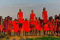 Masai Warriors Performing Traditional Welcoming Dance